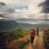 camino: how much does it cost?